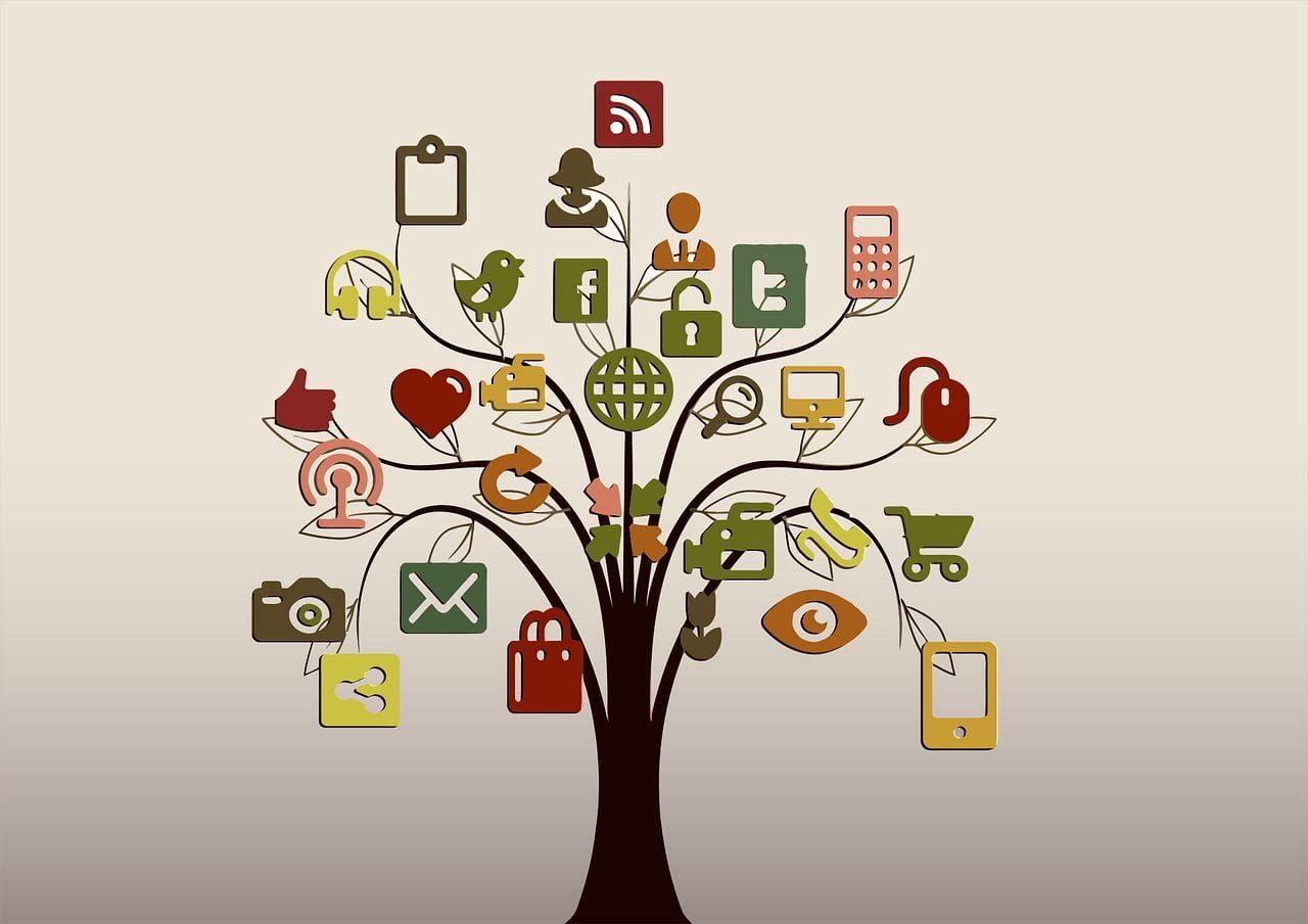 Diferenças entre a tecnologia social para a convencional e apropriada